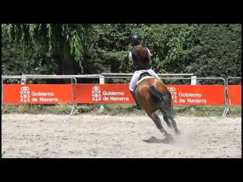Concurso Saltos Primavera (6) 16/06/12