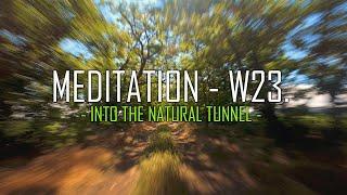 MEDITATION - Week 23. Cinematic FPV (no cut)