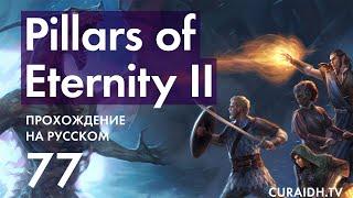 Прохождение Pillars of Eternity II Deadfire - 077 - Обсерватория Бекарны (Причуды Бекарны)