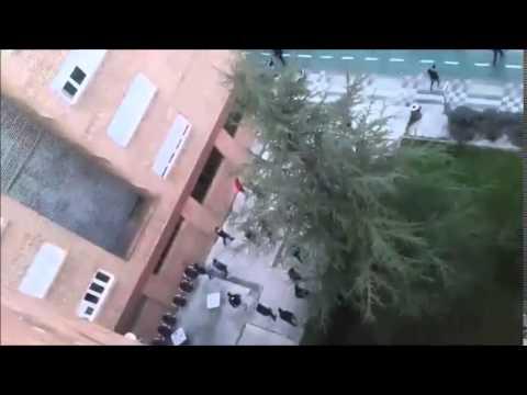 Incidentes y carga policial con aficionados del Zaragoza