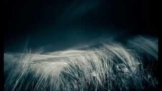 Mark Forster (feat. Sido)   Au Revoir (English Lyrics Translation)