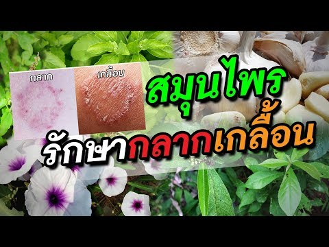 Vishnevsky ครีม neurodermatitis