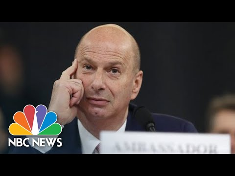 Castor Questions Sondland's Recollection Of Events Without Notes   NBC News