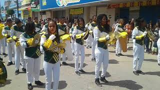 Desfile Cívico Barreiros-pe 07/09/18