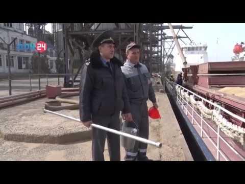 В Ростовской области Управлением Россельхознадзора проведен досмотр подкарантинной продукции, предназначенной на экспорт