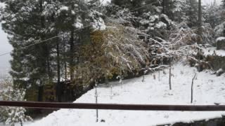 Video del alojamiento Casa Cerro da Correia