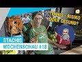 Leben und Sterben dank Tennis | Stachis Wochenschau #18 | myTennis