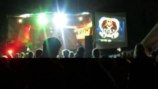 Video Krize - Selefest 2013