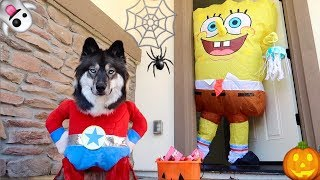 Kakoa's Pretend Play Halloween Trick or Treating!