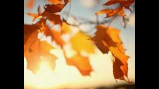 Franck Pourcel -  Theme From Hurricane  ( Autumn Mood )