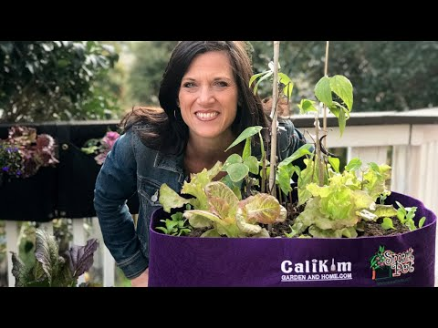 🍅 LIVE: My 3 Favorite Viewer Tips for Gardening with Kids & GIVEAWAY Drawing (REPLAY)
