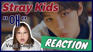 """個性あふれる歌声にびっくり! Stray Kids """"애"""" MV 【歌声分析】【リアクション】""""OH"""""""