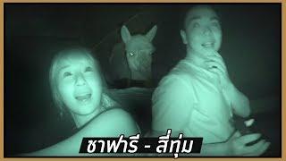 Exploring Night Predator's Life (Night Safari) 🌙