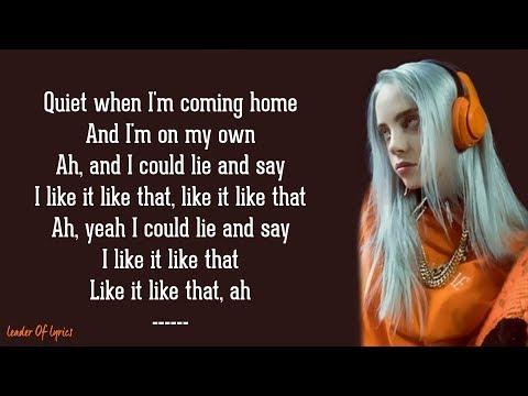 Billie Eilish - when the party's over (Lyrics)