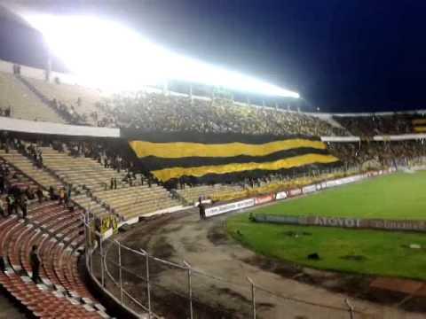"""LA ULTRA SUR 34 2014 CENTENARIO THE STRONGEST TIGRE"" Barra: La Gloriosa Ultra Sur 34 • Club: The Strongest"