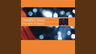 Shining Stars - Morella's Forest