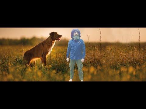 Die Gelenke - Arthrose und Arthritis beim Hund