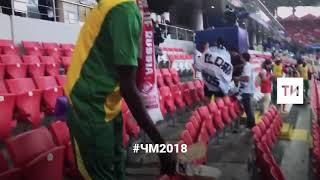 Болельщики Сенегала убирают за собой мусор на стадионе после матча