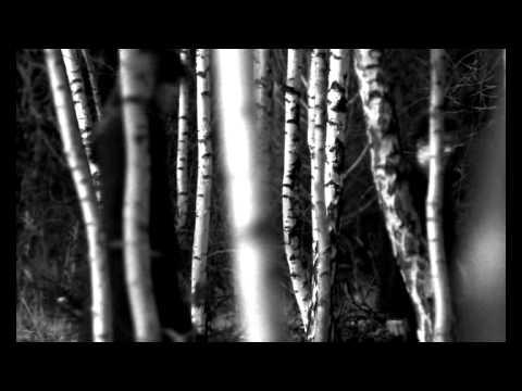 RK130 - Zima