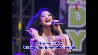 Download lagu Nova Queen Cidro Ing Janji Mp3