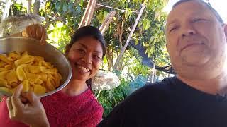 Thailand Ausgewandert. Jackfrucht ,Jackfruit,Khnun.Kauf und Verarbeitung der 11 kg Frucht Marktkauf
