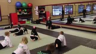 Martial Arts Kids Class Example (Age 4 6)