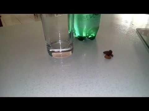 Le traitement de la dépendance alcoolisée à volgograde