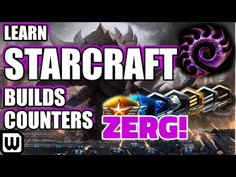 Learn Starcraft Zerg Guide (2019)  - Build Orders, Decision Making & Commentary (Plat/Diamond)