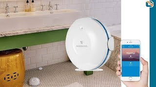 Wasserstein Smart Wi-Fi Water Sensor Review