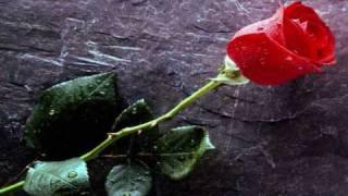 Chayanne - Peligro de amor
