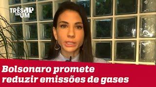 Amanda Klein: Não há uma política pública que vá na direção de cumprir as metas de Bolsonaro