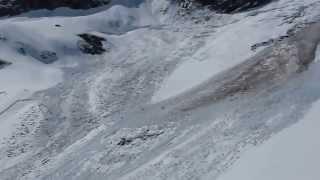 Горные козлы спасаются из под лавины