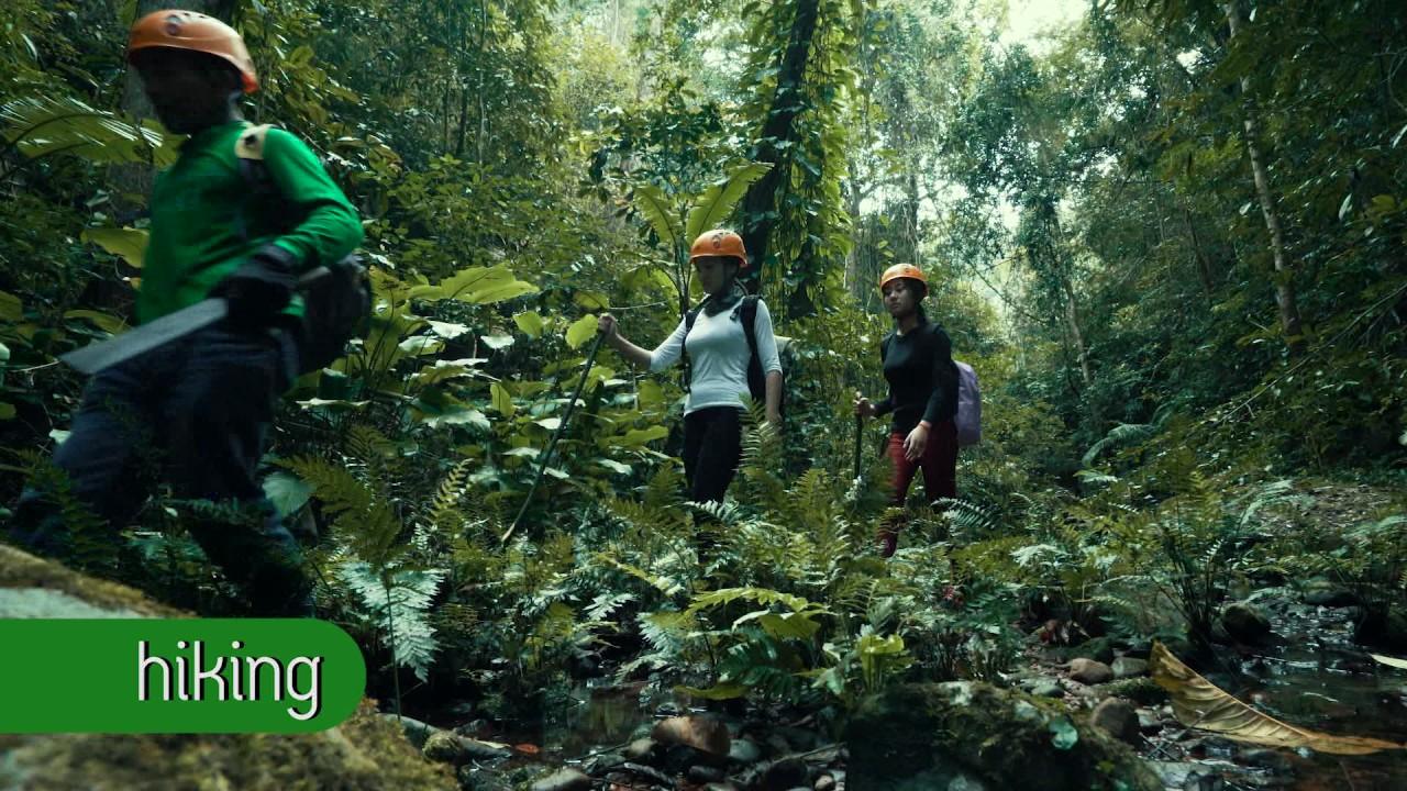 Trekking, Zip lining, Tree house