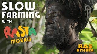 Slow Farming with Rasta Mokko (and Ratty)…Weeding & Hog Fkry!