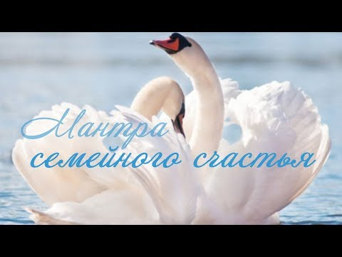Текст песни счастье олега винника