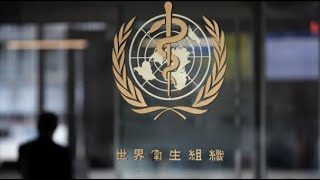 WATCH LIVE: World Health Organization provides update on coronavirus