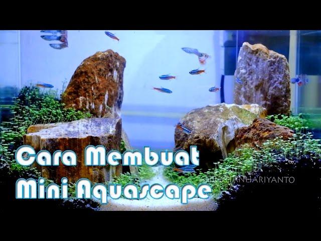 Cara Membuat Mini Aquascape 2017 | Indonesia