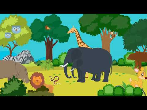 Man-Animal Conflict | Simplified for Beginners | Officers IAS Academy