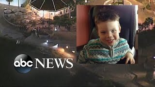 Boy's Body Recovered after Disney Gator Attack