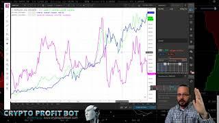 Profit Trailer Feeder - Part 1