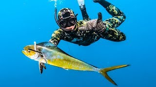 Please SUBSCRIBE: https://bit.ly/2POyiqF  Join the adventure as the boys and I head deep sea to spear my favourite fish in the ocean, mahi mahi. After an epic day diving, we cooked up a beautiful feed of purple tusk fish while the sun set.   Grab SHOREHAWK Products Here  https://shorehawk.co/   Follow Socials https://www.instagram.com/_nickfry/ https://www.instagram.com/_shorehawk/  Tunes All royalty free music by https://artlist.io/