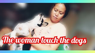 Pets and Animals Cambodia ,Cambodia Animals and Pets,Dogs and Cats Khmer,Cambodia dogs and Cats,