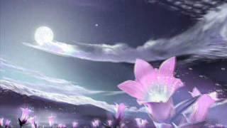 Tose Proeski - iluzija Lyrics