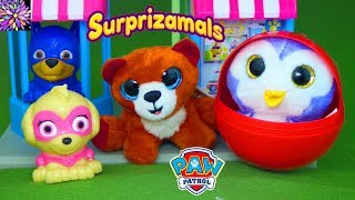 Paw Patrol Skye and Chase Find the Missing Baby Surprise Eggs Funny Toy Stories Surprizamals Plush