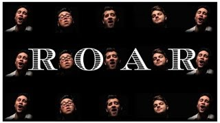 Roar - Katy Perry (cover) official music video