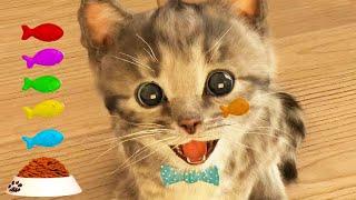 ПРИКЛЮЧЕНИЕ МАЛЕНЬКОГО КОТЕНКА мультфильм про котят НОВЫЙ ГОД и новые мультики на #ММ