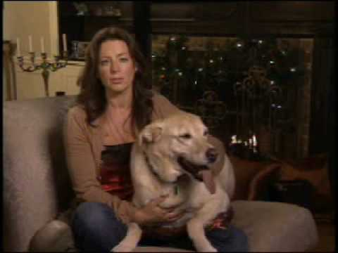 BCSPCA, and SPCA Commercial (2008 - 2009) (Television Commercial)