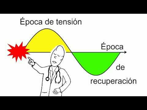 Dispositivos para la hipertensión