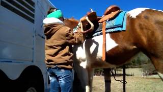 How To Tack Up For Barrel Racing Pt. 1