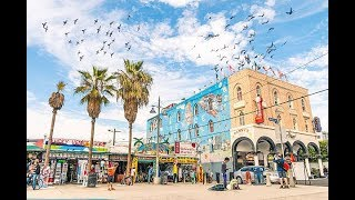 13 THINGS TO DO AT VENICE BEACH // LOS ANGELES